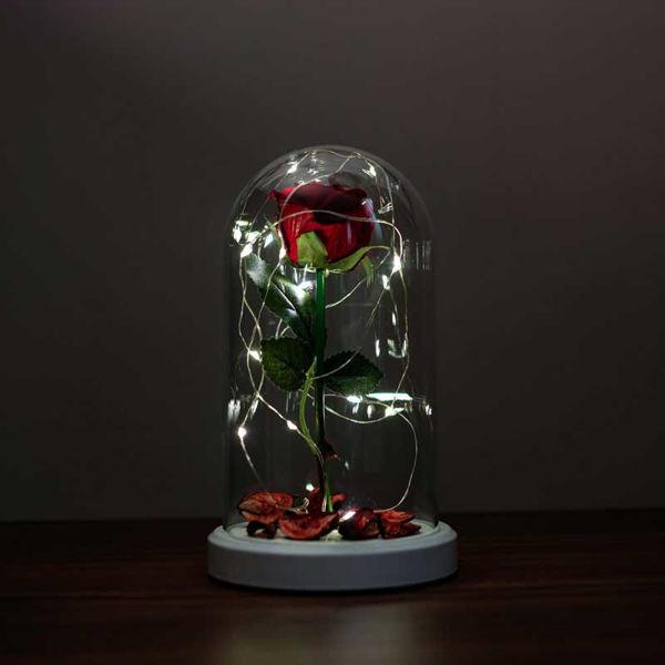 Kırmızı Gül Işıklı Cam Fanus Lamba resmi