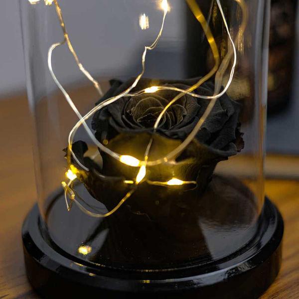 Siyah Solmayan Gül Işıklı Cam Fanus Lamba resmi
