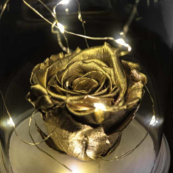 Işıklı Cam Fanus Gold Solmayan Gül Lamba resmi