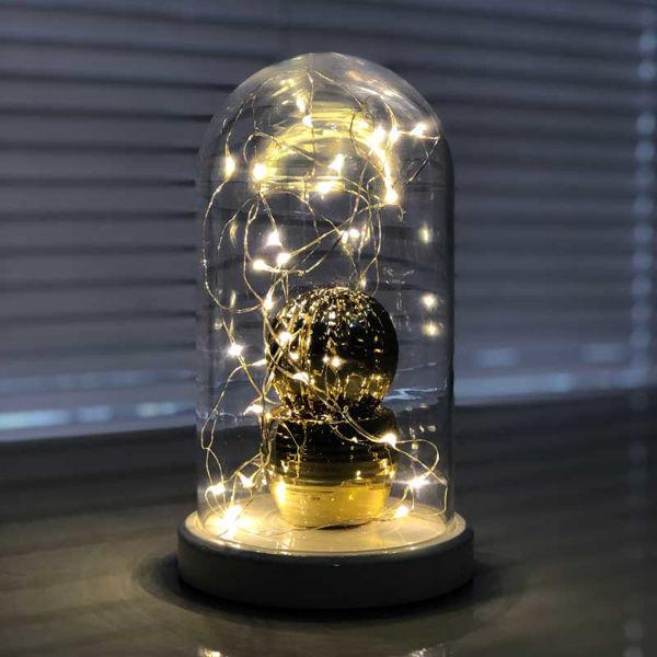 Işıklı Cam Fanus Gold Kaktüs Figürlü resmi