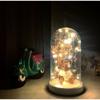 Işıklı Cam Fanus Ayı ve Çiçek Figürlü resmi