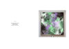 Lilac resmi