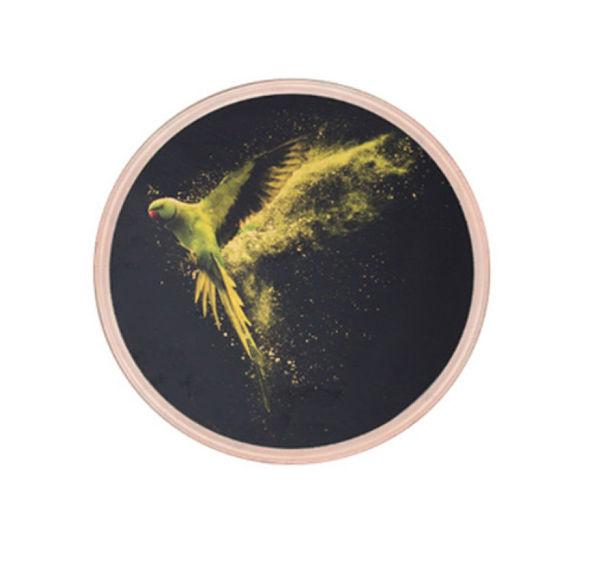 Yeşil Papağan resmi